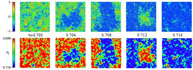 Here are pictures of the local orientations (upper panels) and the local densities (lower panels) for the 1024x1024 systems at various densities. Phase separation is easily visible.